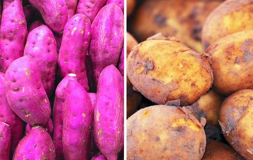[홍익희의 음식이야기] 고구마와 감자, 이름이 바뀐 사연 기사의 사진