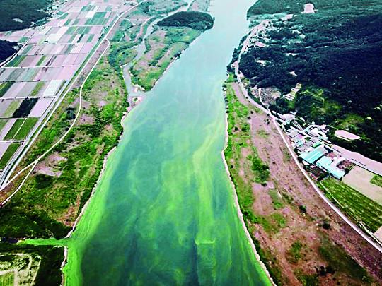 [And 지역 리포트] 페놀에 놀라고 불신에 덧나고, 30여년간 9건 대구지역 식수 수난사 기사의 사진