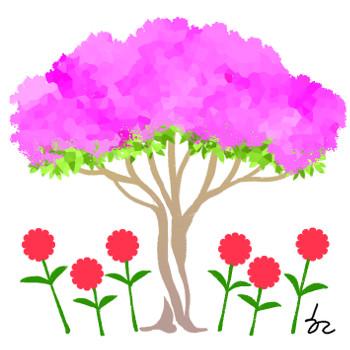 [겨자씨] 백일홍과 배롱나무 기사의 사진