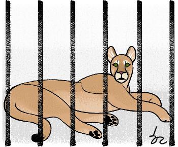 동물원의 불편한 진실