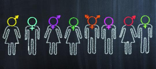 성경은 동성애에 대해 무엇을 말하고 있을까 기사의 사진