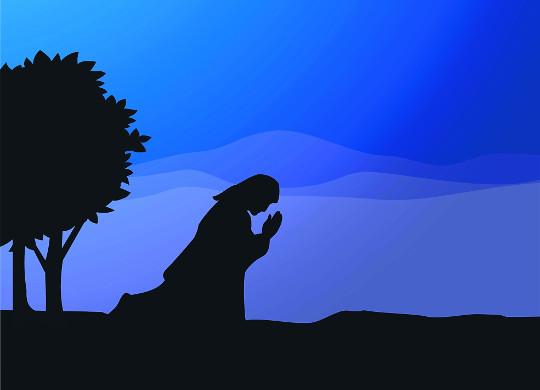[이창우 박사의 바디 바이블] 결국엔 하나님의 사랑 앞에 무릎 꿇게 되는 인생 기사의 사진