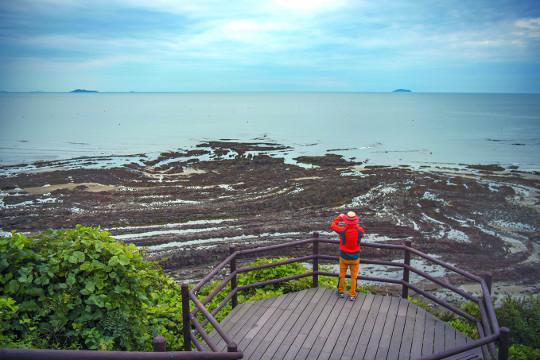 몽글몽글 조약돌과 휘어져 말린 듯 기묘한 바위… '천연기념물' 충남 태안 내파수도 기사의 사진