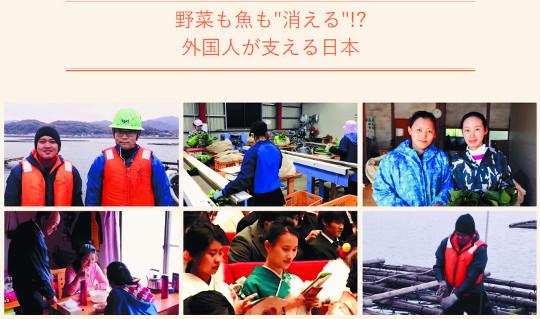 초고령 일본은 '숨겨진 이민 대국', 일손은 필요한데 이민은 싫고… 기사의 사진