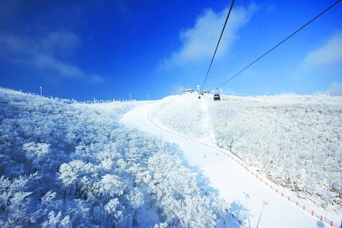 雪雪… 스키마니아들 슬슬 나가볼까 기사의 사진