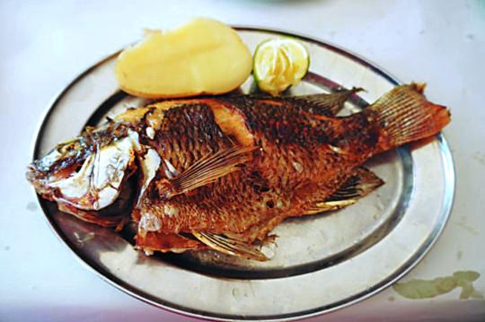 [홍익희의 음식이야기] 베드로 물고기 기사의 사진