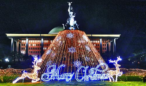 '민의의 전당' 환하게 밝힌 성탄트리 기사의 사진