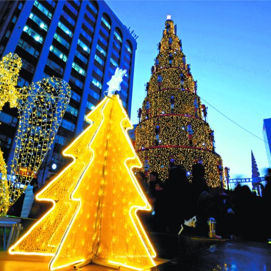 [포토 카페] 세상을 비추는 크리스마스트리 기사의 사진