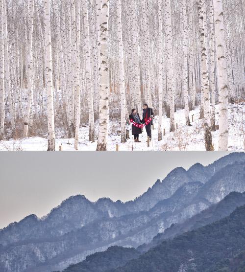 [앵글속 세상] '1억5000만 화소'… 무한 가능성에 압도 당하다 기사의 사진