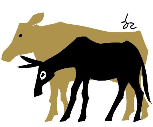 [한마당-이흥우] 동물권 기사의 사진