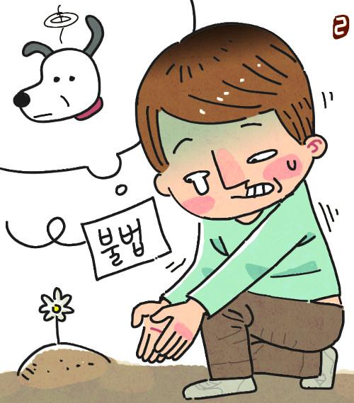 '케어 사태'가 보여준 반려동물 1000만 시대의 민낯 기사의 사진