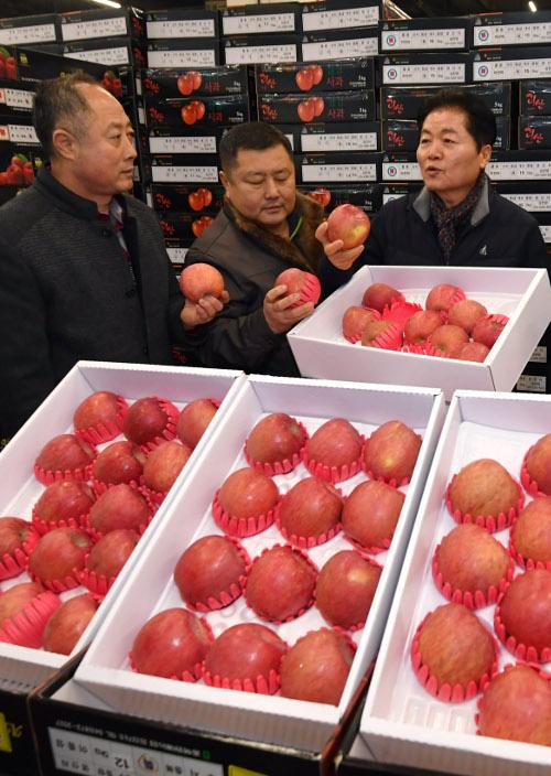 [포토] 김병원 농협회장, 설 앞두고 과일 품질 점검 기사의 사진