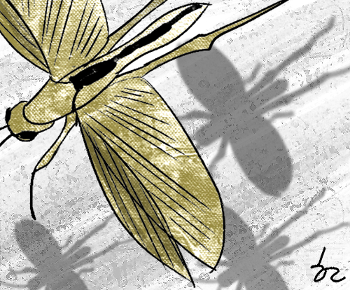 [한마당-염성덕] 메뚜기 재앙 기사의 사진